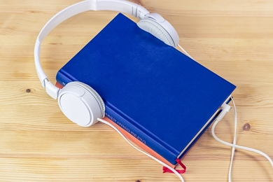 Picture for category audio books