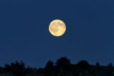 Bild für Kategorie Mondkalender
